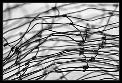 Oka sítě