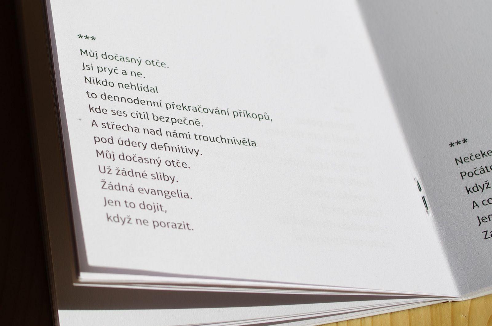 Onřej Hložek - Ulicí Dolorosa