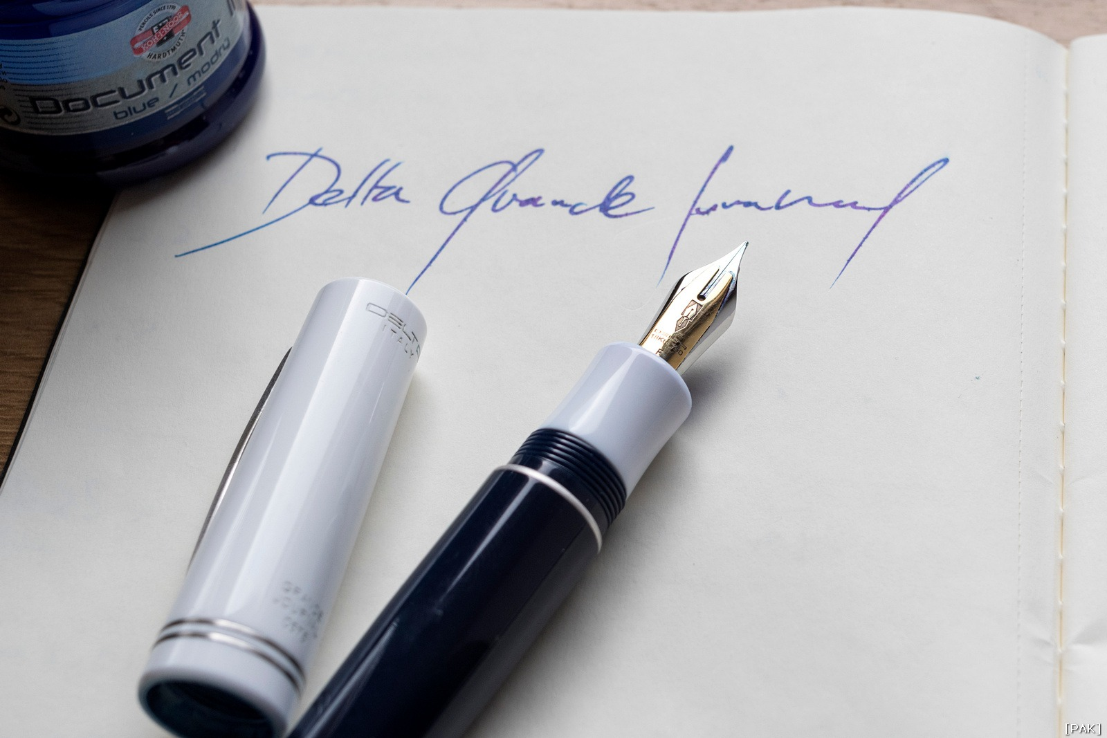 Delta Grande Journal Fusion nib